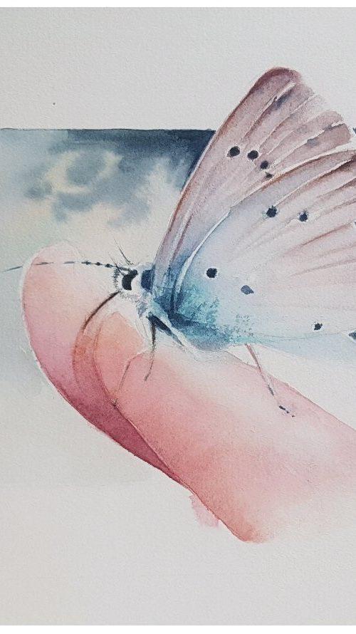 Un battement d'ailes